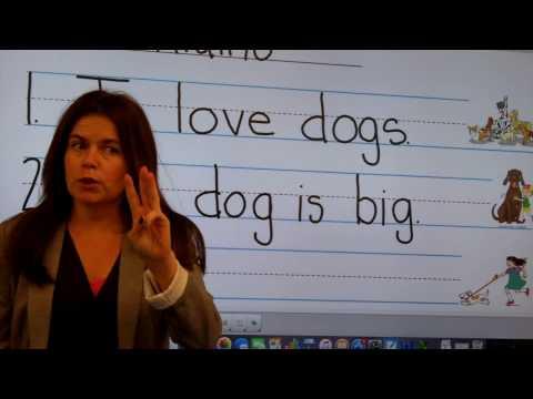 Write Dogs
