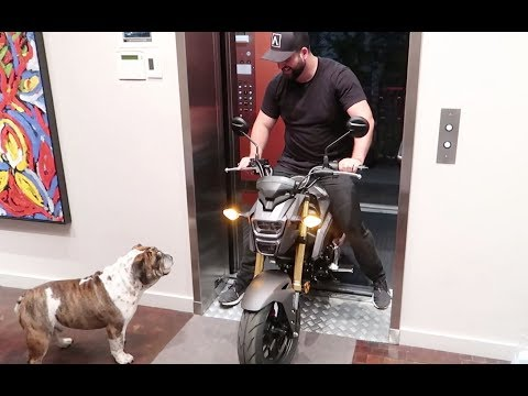 RIDING A MOTORCYCLE IN MY APARTMENT   NEW 2018 HONDA GROM