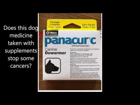 does a $5 dog medicine help stop cancer ?