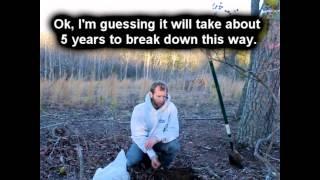 DIY-Planting Natural Fence- Osage Orange