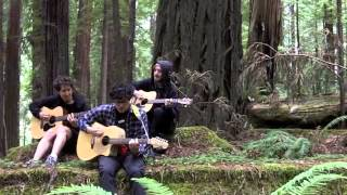 Spoonboy and ONSIND- Call Me Maybe (Live at Redwood National Forest)