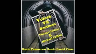 Vintage Culture Voices VS Michael Calfan Brothers