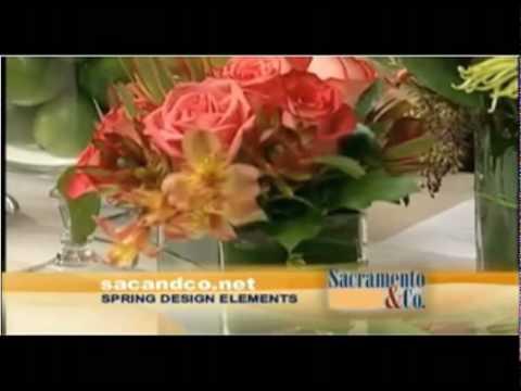 Spring Design Elements.mov
