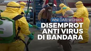 Tiba di Batam, WNI yang Dievakuasi dari Wuhan Disemprot Disinfektan Anti Virus sebelum Dikarantina