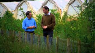 Alan Titchmarsh visits British strawberry producer Harry Hall - Waitrose