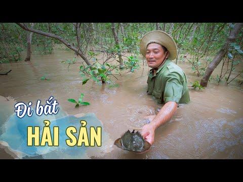 Đi bắt hải sản, ốc leo cây ở biển Sóc Trăng  Du lịch ẩm thực Miền Tây Việt Nam