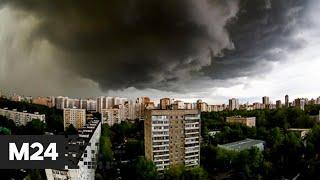 """Утро"": синоптики предупредили о дождях с грозами в Москве - Москва 24"