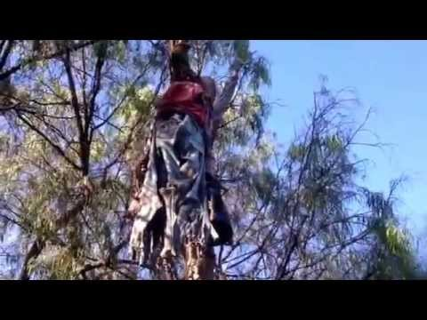 Knott's Scary Farm 2014 Hanging Victim Calico Ghost Town Skeleton Berry Farm