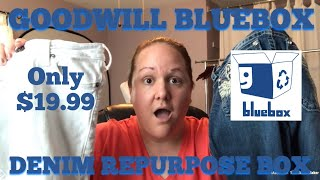 Goodwill Bluebox Repurposed Denim Box | 10-12 Jeans for Only $19.99 | DIY or Resale
