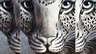【驚き】錯覚芸術・目からウロコの芸術!三次元が二次元になる錯覚アート 名波はるか 検索動画 13