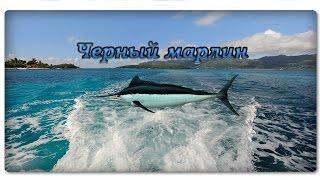 Русская Рыбалка 3.99 (Чёрный марлин)