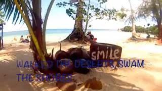 Pure Shores, my beach, lyrics, 2016