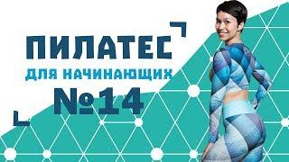 Пилатес для начинающих №14 от Натальи Папушой