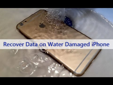 Recover data iphone 6 water damage