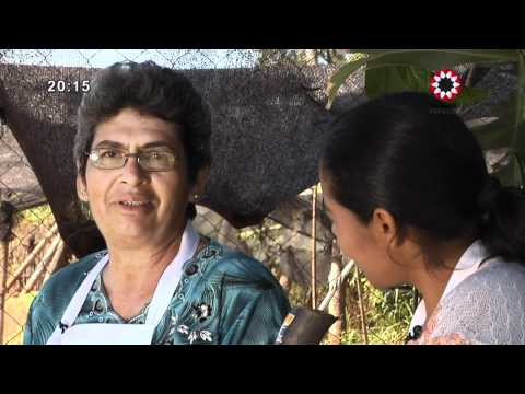 Tembi'u Rape 09/02/2012 TV Pública Paraguay HD