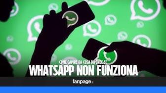 Come capire da cosa dipende se WhatsApp non funziona