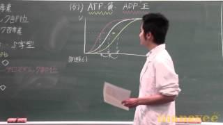 アロステリック酵素による調節-11