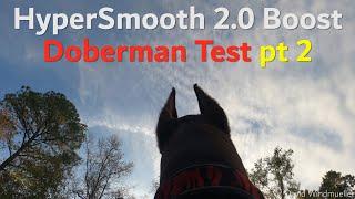 HyperSmooth 2.0 Boost Doberman Test pt 2 | GoPro Hero 8 Black