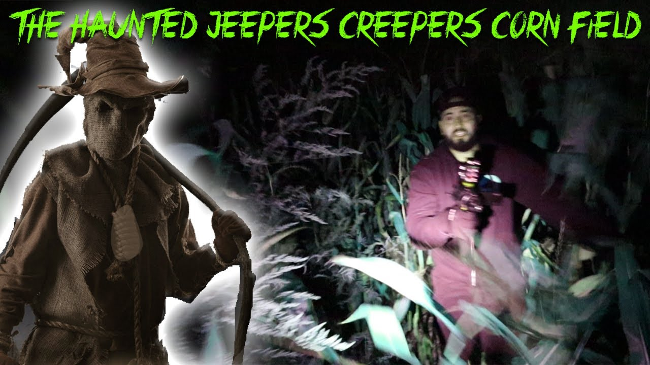 THE HAUNTED JEEPERS CREEPERS CORN FIELD GONE WRONG!