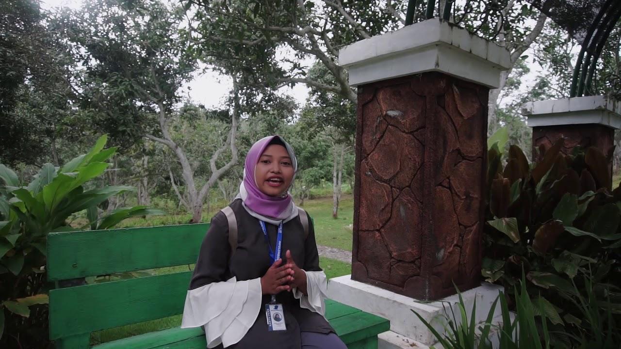 Kebun Raya Lemor Taman Rekreasi Sekaligus Edukasi Youtube