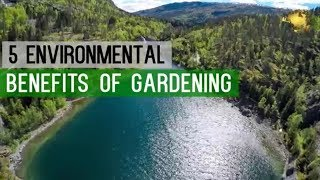 HAPPY World Environment Day (WED) | GARDENING Benefits - GO GREEN - Save Earth - Start Gardening!