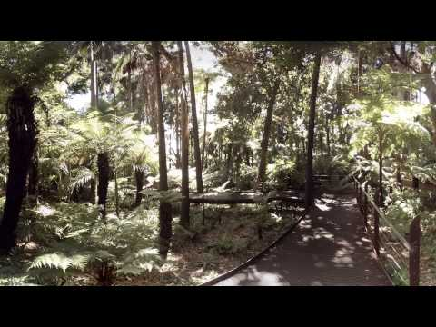 360 video: Royal Botanic Gardens, Melbourne, Australia