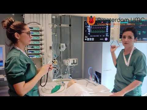 Werken als IC Kinderverpleegkundige