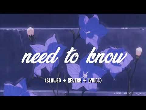 doja cat ~ need to know (slowed + reverb + lyrics)