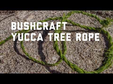 [Bushcraft] Yucca Tree Rope