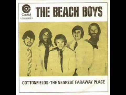 Cotton Fields (The Cotton Song) - The Beach Boys