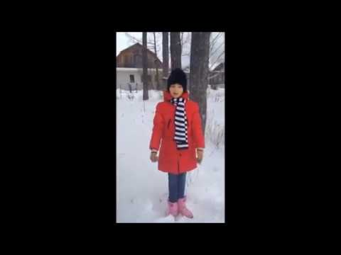 Изображение предпросмотра прочтения – ВикторияМенькова читает произведение «Зимнее утро» А.С.Пушкина