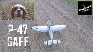 e flite p 47 1 2 razorback   flying with safe