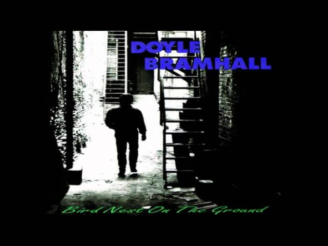 Doyle Bramhall_I Can See Clearly Now