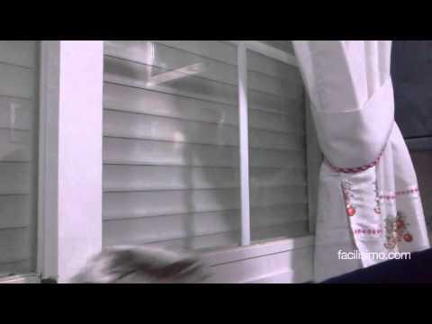 Como hacer limpia vidrios casero funnydog tv - Como limpiar cristales ...