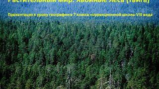 Растительный мир. Хвойные леса (тайга)