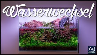 SO MACHST DU EINEN WASSERWECHSEL IM AQUARIUM 💦 | Aquarium reinigen | AquaOwner