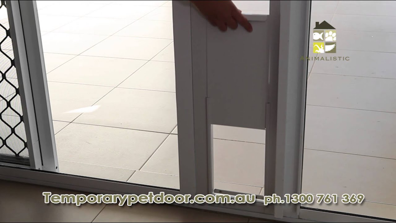 Animalistic patio pet door Channel 7 TV mercial