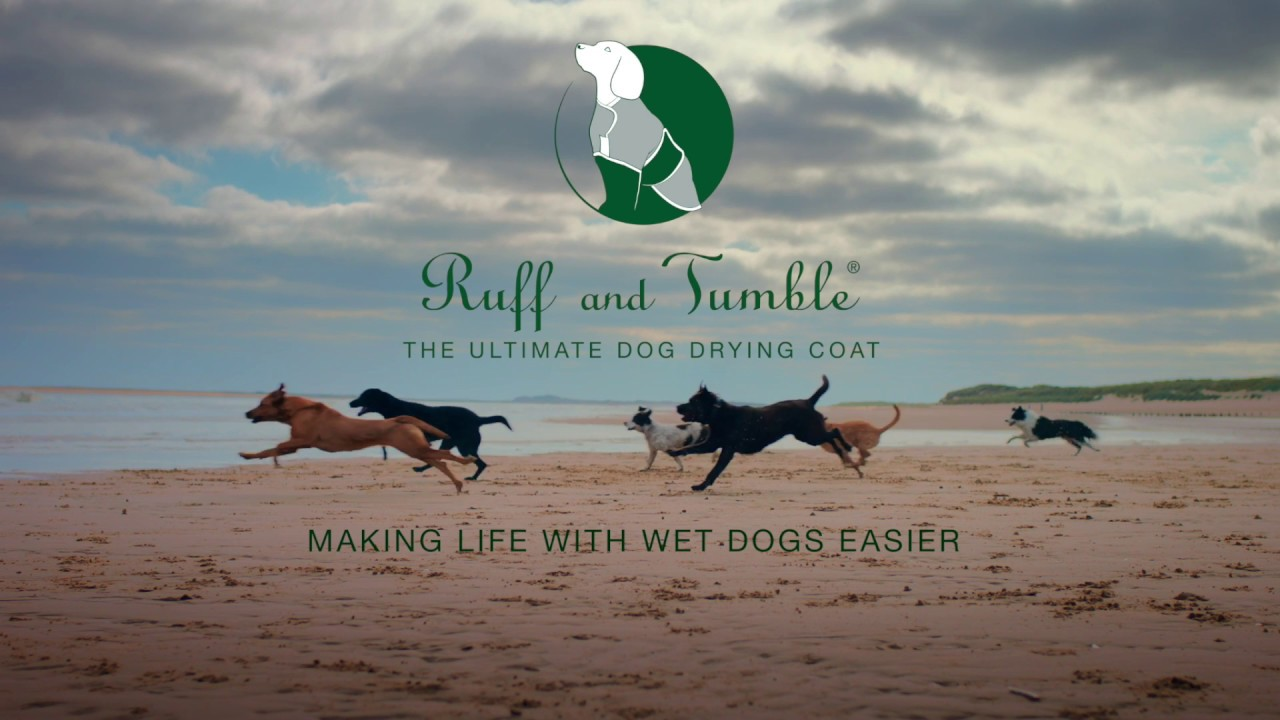 Ruff and Tumble - How to quickly and easily dry your dog!