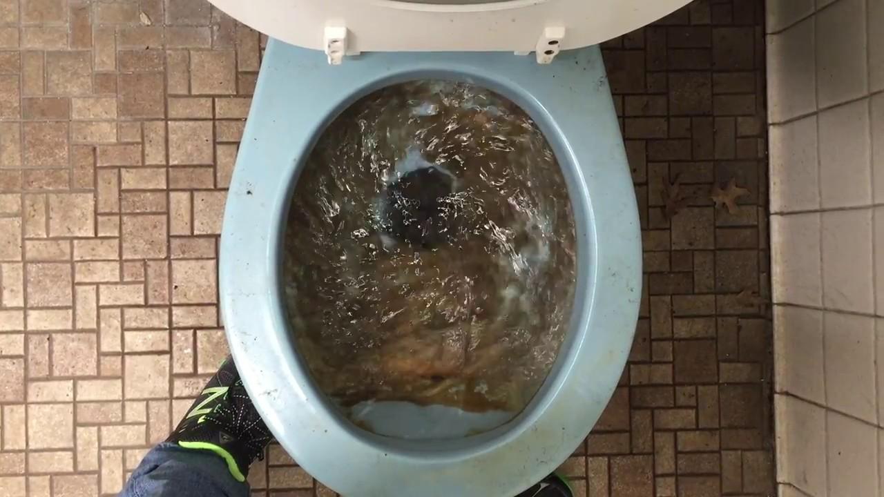 892. Blue American Standard Glenwall Toilet! - YouTube