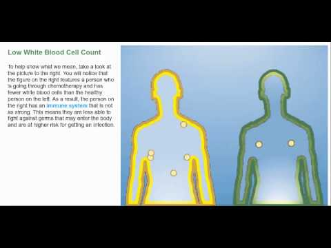 understanding the effects of low white blood cell count - youtube, Skeleton