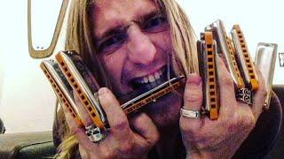 Wilde Tuning Live Harmonica Q&A