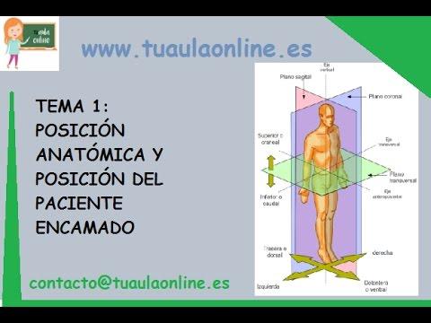 POSICIÓN ANATÓMICA Y POSICIÓN DEL PACIENTE ENCAMADO /// TCAE - YouTube