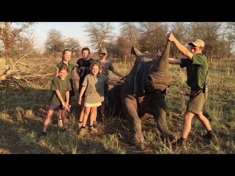 Why Help Save Rhino of South Africa?