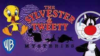 Looney Tunes SING-ALONG | The Sylvester & Tweety Mysteries Theme Song | WB Kids