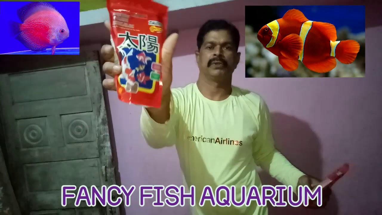 Fish food available hai
