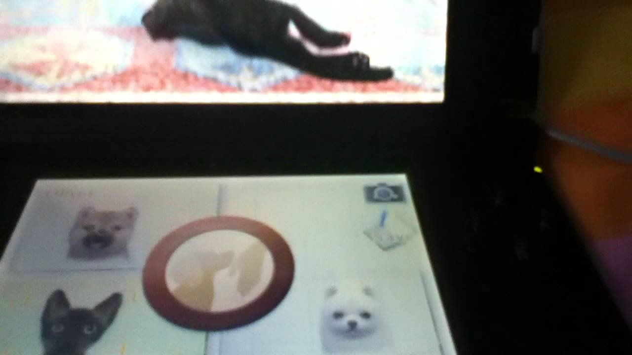 how to restart your game on nintendogs cats