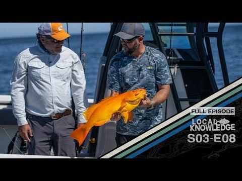 LA Bay Baja Mexico Fishing Trip S03 E08 - Islas Encantadas