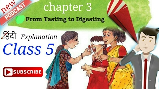 Video Class 5 (from tasting to digesting) chapter 3 looking around hindi explanation NCERT CBSE download MP3, 3GP, MP4, WEBM, AVI, FLV Juni 2018