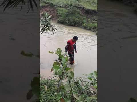Trajang jex mandi di sungai