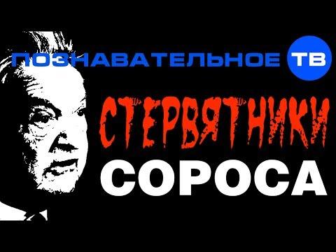 Стервятники Сороса (Познавательное ТВ, Николай Стариков)